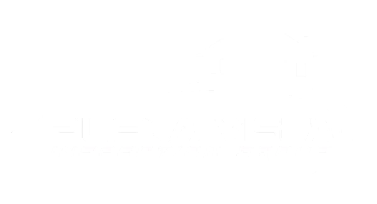 Buena Vista Inspection Group logo