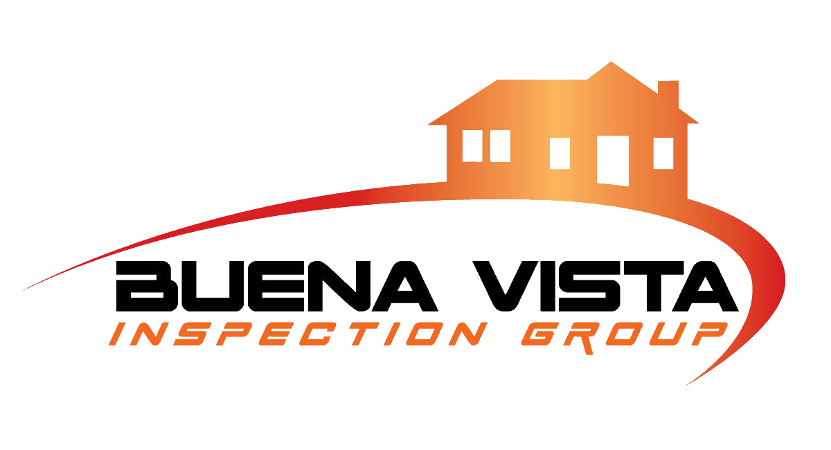 Buena Vista Inspection Group